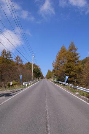 2008102002.jpg